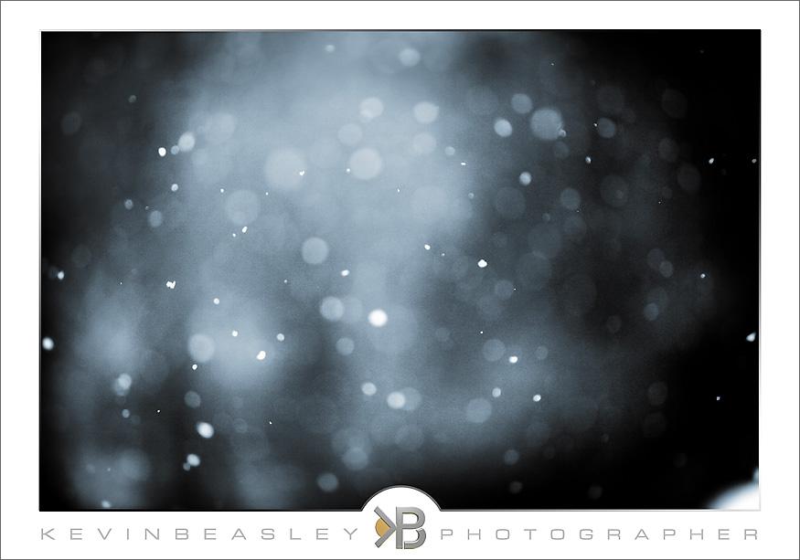 snow_2904-rt